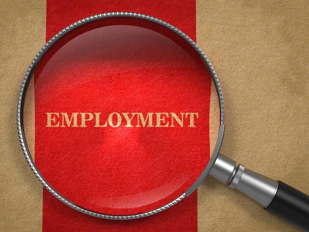 Employment  through Magnifying Glass.